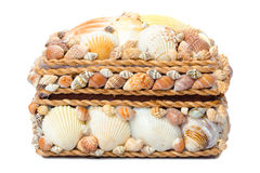 Chest made of seashells isolated on white Stock Photography