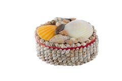 Chest from seashells Stock Image