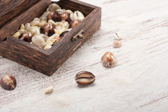 Chest and seashells Stock Photography