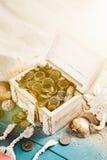 Chest treasure Royalty Free Stock Image