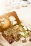 Chest treasure Royalty Free Stock Photos