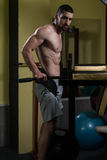 Chest And Triceps Exercise on Parallel Bars Royalty Free Stock Image