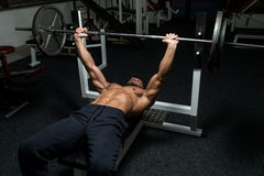 Chest Workout On Bench Press Royalty Free Stock Image