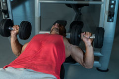 Chest Workout With Dumbbells Royalty Free Stock Images