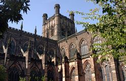 Chester Cathedral. Sandstone cathedral in the Roman city of chester viewed through the bushes Royalty Free Stock Photo