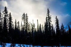 Chester Lake, Peter lougheed Provinciaal Park, Alberta, Canada stock fotografie