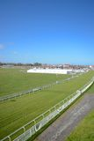 Chester race course. Cheshire on a sunny day Stock Photo