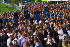 Chester races. A crowd of punters in the stand at the Chester race course in Cheshire England royalty free stock images