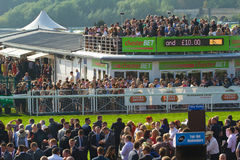 Chester races Stock Image