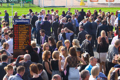 Chester races Royalty Free Stock Image