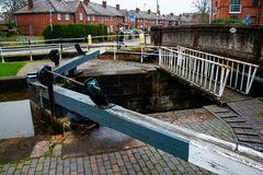 Chesters canal boat locke, one of many. stock photo