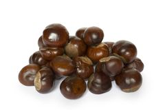 Chestnut. Small group of chestnuts laid out on a white background Stock Photography