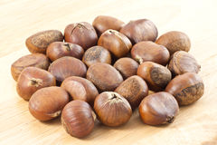 Chestnut Stock Photos