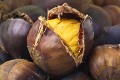Chestnut. Roasted open close up royalty free stock photography