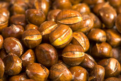Chestnut. The stack of chestnut, close-up Stock Photography
