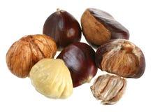 Chestnut. Set macro isolated on white background royalty free stock photo