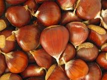 Chestnut background Stock Photos