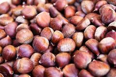 Chestnut background Stock Images