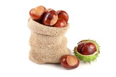 Chestnut in a bag isolated on white background closeup Royalty Free Stock Image