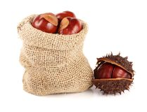 Chestnut in a bag isolated on white background closeup Stock Photos