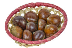 Chestnut basket Royalty Free Stock Images