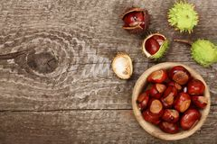 Chestnut in bowl on old wooden background with copy space for your text. Top view Stock Photos
