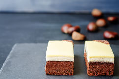 Chestnut brownie cake with chestnut  white chocolate mousse Stock Images