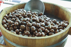 Chestnut in the bucket. Chinese Chestnut in the bucket Stock Images