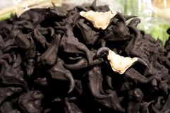 Chestnut Buffalo for sale in market ,Water Chestnut, Trapa natans stock images