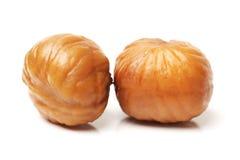 Chestnut royalty free stock image