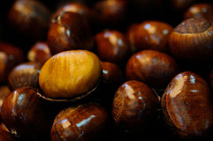 Chestnut. In the chinese market Stock Photo