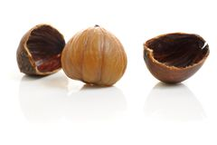 Chestnut. Closeup cracked roasted chestnut on white background Royalty Free Stock Images