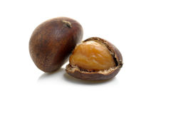 Chestnut. Closeup cracked roasted chestnut on white background Royalty Free Stock Photos