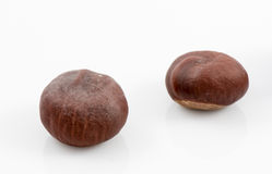Chestnut core isolated on white Royalty Free Stock Photo