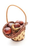 Chestnut with crust in wicker basket on white background Stock Photos