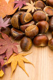 Chestnut and dry maple leave on wooden background Stock Photos
