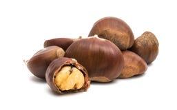 Chestnut edible. On white background royalty free stock photos