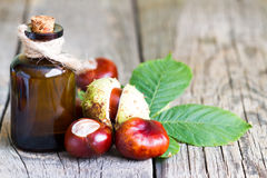 Chestnut extract in the bottle closeup Royalty Free Stock Images