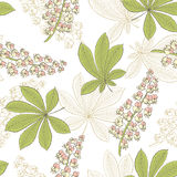 Chestnut flower leaf graphic color seamless pattern sketch illustration. Vector Royalty Free Stock Image