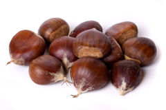 Chestnut fruit isolated on white Royalty Free Stock Image