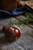 Chestnut with herbs and bread Royalty Free Stock Images