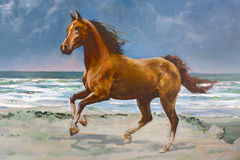Chestnut horse, fragment of painting. Chestnut horse galloping on shore, fragment of painting Royalty Free Stock Photos