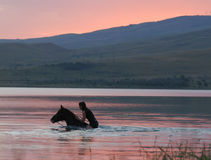 Chestnut horse and the girl in the water. Beautiful chestnut Russian Don gelding and the girl swimming in the water at sunrise stock photography