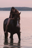 Chestnut horse and the girl in the water. Beautiful chestnut Russian Don gelding and the girl standing in the water at sunrise Royalty Free Stock Image