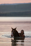 Chestnut horse and the girl in the water. Beautiful chestnut Russian Don gelding and the girl swimming in the water at sunrise Royalty Free Stock Image