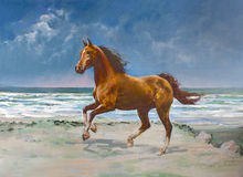 Chestnut horse, painting. Chestnut horse galloping on shore, painting Royalty Free Stock Images