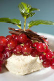 Chestnut icecream with redcurrants Royalty Free Stock Photos