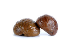 Chestnut isolated on the white background Royalty Free Stock Images