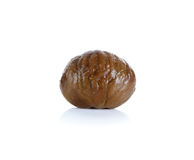 Chestnut isolated on the white background Stock Photo