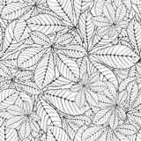 Chestnut leaf. Seamless pattern made Isolated skeletal chestnut leaf with veins. vector illustration Stock Photos